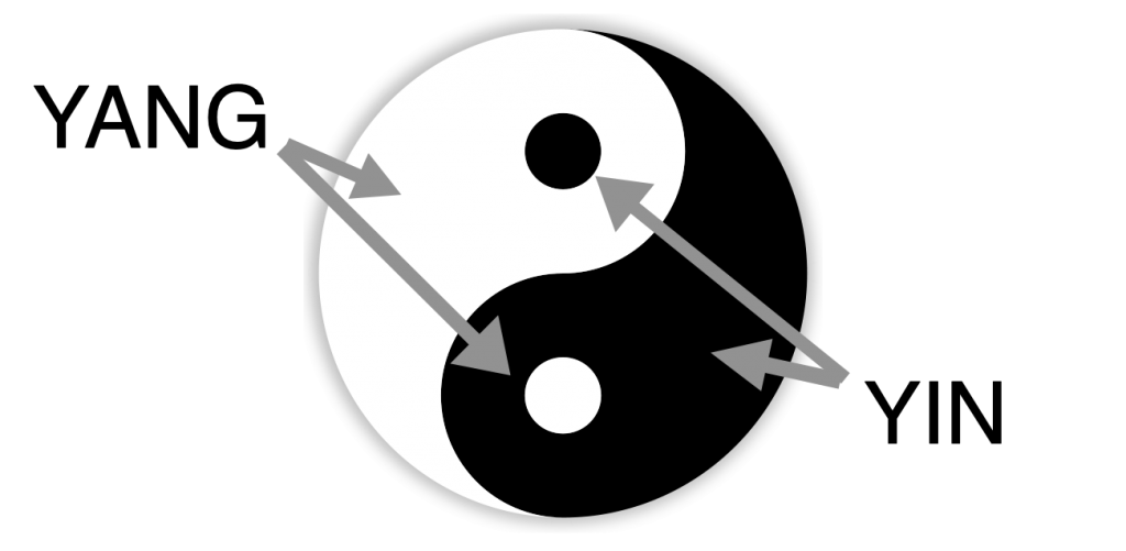 comprehension du yinyang